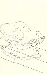Image (86)